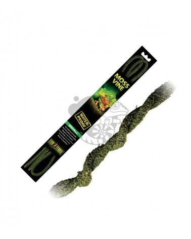 Liana do Terrarium Moss Vine S 200cm EXO TERRA