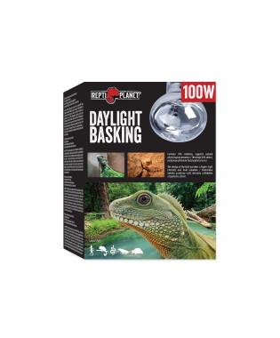 Żarówka grzewcza Daylight Basking 100W REPTI PLANET