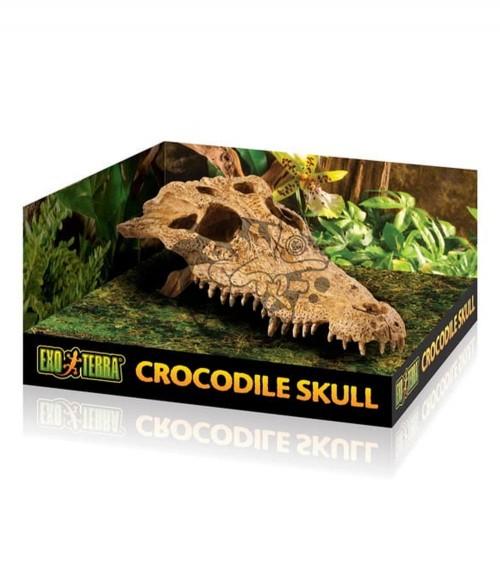 Exo Terra Crocodile Skull - Kryjówka Czaszka Krokodyla