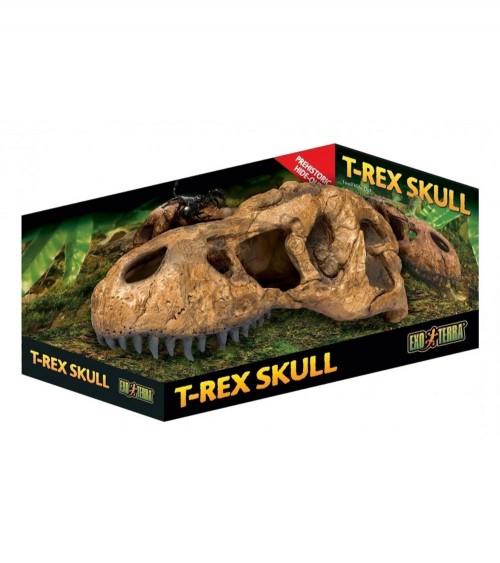 EXO TERRA T-Rex czaszka tyranozaura DUŻA 22x8x9,5 cm
